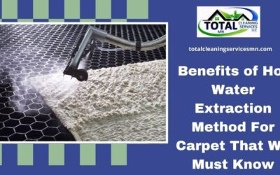 Benefits of Hot Water Extraction Method For Carpet That We Must Know