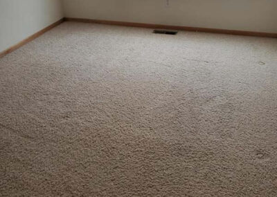 Carpet Cleaning Services Brooklyn Park