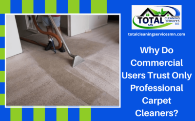 Why Do Commercial Users Trust Only Professional Carpet Cleaners?