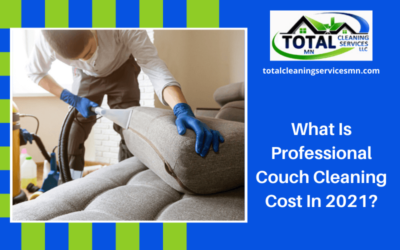 What Is Professional Couch Cleaning Cost In 2021?