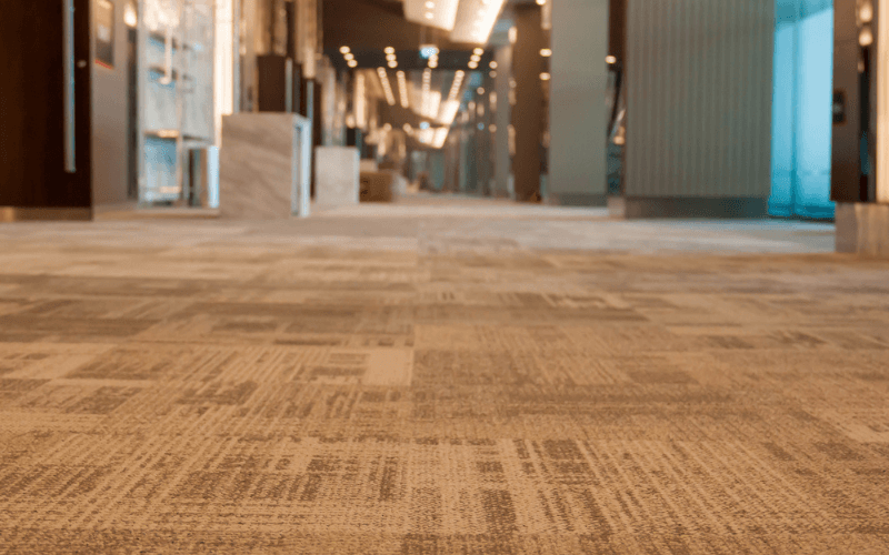 Average Carpet Cleaning Cost